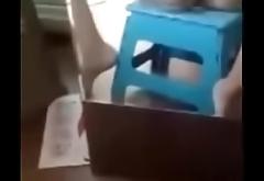 Favorite stool