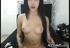 Fleshy Tattooed Tranny Escort